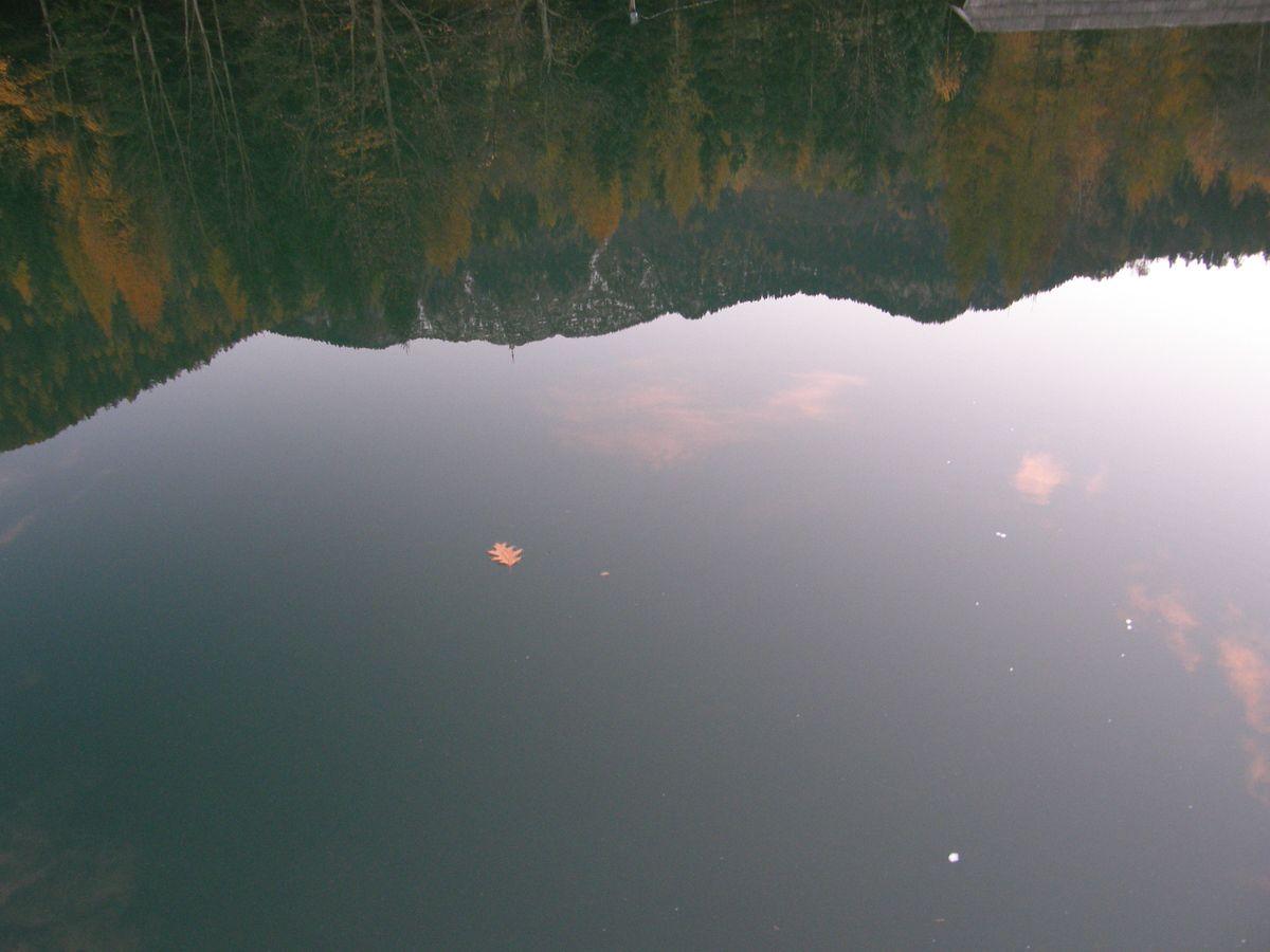 Pociva jezero v tihoti_Boris Rogina